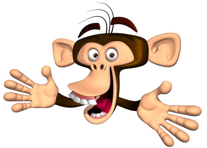 Monkey2_670.jpg